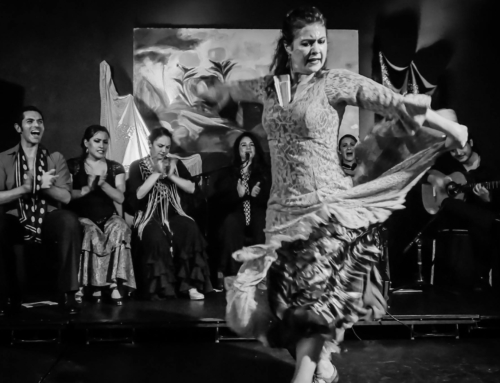 What flamenco offers…